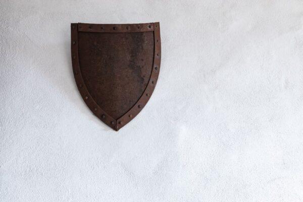 Scut din carton pentru politistii cavaleri