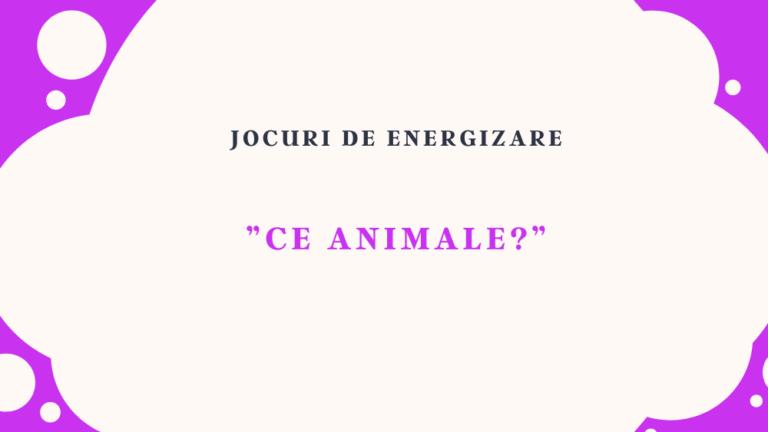 """""""Ce animale"""""""